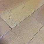 棕櫚箒(しゅろほうき)山本勝之助商店 初期使用時のカス
