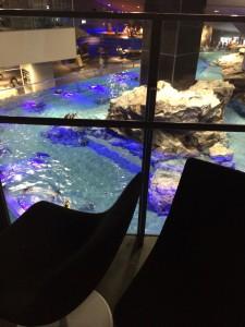 すみだ水族館 椅子からの眺め