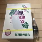 ふるさと納税 和歌山県かつらぎ町からぶどうが届きましたレビュー&感想