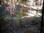 軽井沢ロンギングハウス 部屋からの眺め